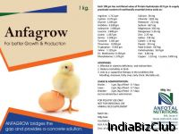 Anfagrow Vitamins Mineral Mixture For Poultry