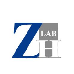 Logo - ZiHe International Trade (Shanghai) Co., Ltd.