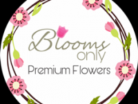 Logo - Blooms Only