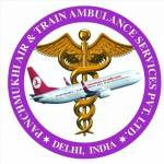 Logo - Panchmukhi North East Ambulance
