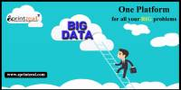 Logo - Big data training in Bangalore