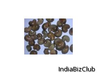 Dried Raw Cashew Nut