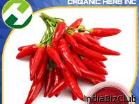 Paprika Organic Pigment Red Color E200 Capsaicin Extract 95