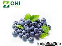 TheConsiderate Service Bilberry Extractof OHI Ensure High Q