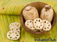 Frozen Lotus Root Slice