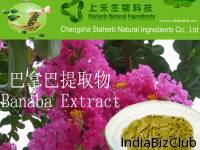 Good Quality Plant Extract Banaba Extract Corosolic Acid 1 20