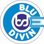 Logo - Blue Divine Event Management