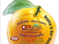 Logo - Orange Exim Pvt. Ltd.