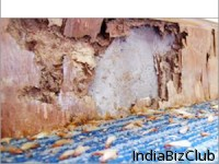 Termites Treatment For Home