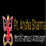 Logo - Blackmagiclovevashikaran - Love Marriage Specialist