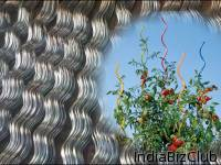 Spiral Wire And Tomato Cages