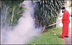 Pest Control (Fogging for Mosquitoes)