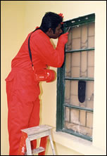 Pest Control (Patching of holes )