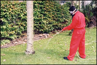 Pest Control (Pumping of chemicals)