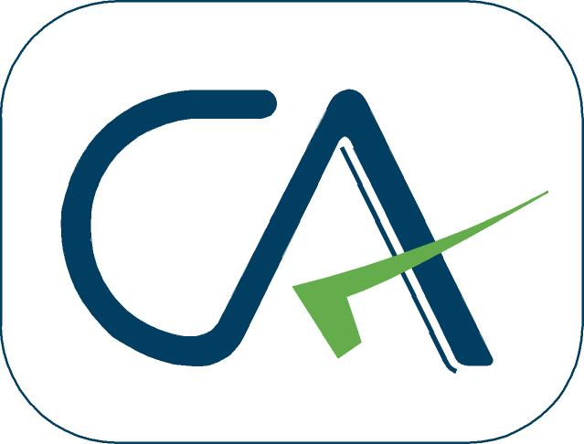 Reliable Chartered Accountant in India