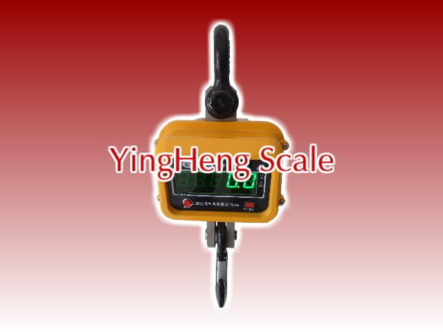 Direct-view Electronic Crane Scale