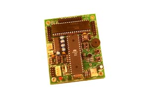 Microcontroller/DSP Based