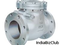 Necon Swing Check Valve